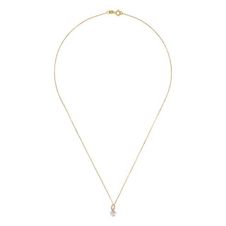 Pendentif Or Jaune, perle de culture blanche et oxydes de zirconium  Phenix + chaîne argent doré offerte